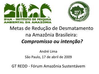 Metas de Redução de Desmatamento na Amazônia Brasileira:  Compromisso ou intenção?