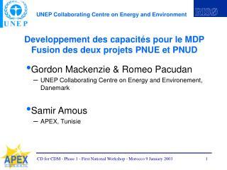 Developpement des capacités pour le MDP Fusion des deux projets PNUE et PNUD