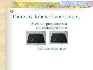 There are kinds of computers,