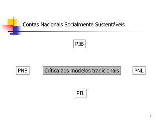 Contas Nacionais Socialmente Sustent�veis