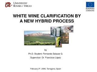 by Ph.D. Student: Fernando Salazar G. Supervisor: Dr. Francisco L�pez
