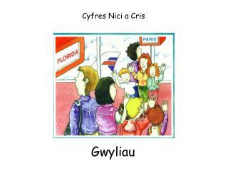 Cyfres Nici a Cris