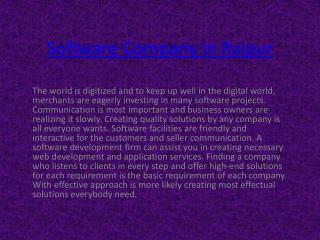 Software Company Raipur