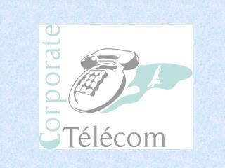 LA SOLUTION «TRIPLE PLAY PRO»  1) TELEPHONIE 2) INTERNET  3) TRANSACTIONS FINANCIERES