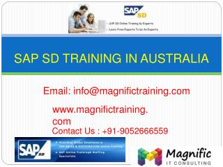 sap sd online training in Delhi
