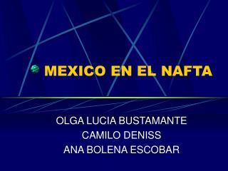 MEXICO EN EL NAFTA