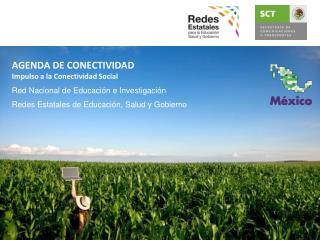 AGENDA DE CONECTIVIDAD Impulso a la Conectividad Social Red Nacional de Educación e Investigación