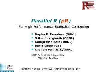Parallel R ( pR )