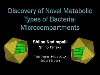 Discovery of Novel Metabolic Types of Bacterial Microcompartments