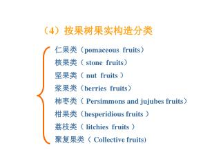 仁果类( pomaceous  fruits ) 核果类(  stone  fruits ) 坚果类(  nut  fruits  ) 浆果类( berries  fruits )