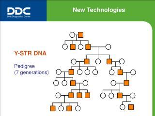 Y-STR DNA Pedigree (7 generations)