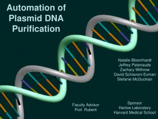 Automation of Plasmid DNA Purification