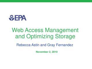 Web Access Management and Optimizing Storage