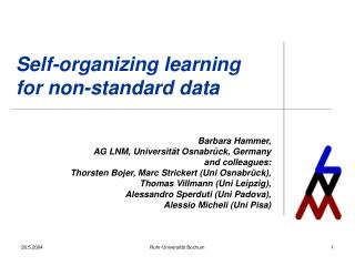 Self-organizing learning for non-standard data