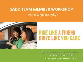 SADD team member workshop