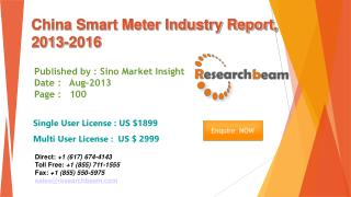 China Smart Meter Market Size, Share, Industry 2013-2016