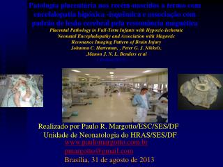 paulomargotto.br pmargotto@gmail Brasília, 31 de agosto de 2013
