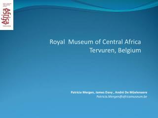 Patricia Mergen, James Davy , André De Mûelenaere Patricia.Mergen@africamuseum.be