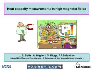 Heat capacity measurements in high magnetic fields