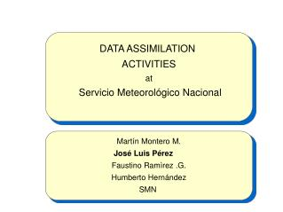 DATA ASSIMILATION  ACTIVITIES at  Servicio Meteorológico Nacional