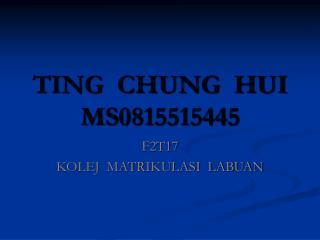 TING  CHUNG  HUI MS0815515445