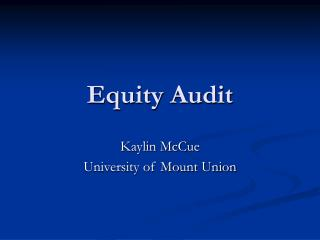Equity Audit