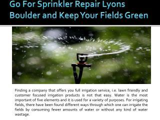 Lawn Sprinkler System Boulder