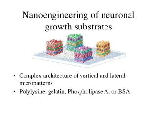 Nanoengineering of neuronal growth substrates