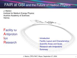 FAIR at GSI  and the Future of Hadron Physics
