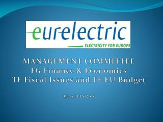 MANAGEMENT COMMITTEE FG  Finance &  Economics TF  Fiscal Issues and  TF EU  Budget Oğuz BAYRAM