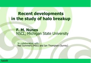 F. M. Nunes NSCL, Michigan State University
