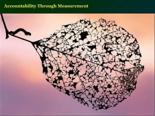 Accountability Through Measurement