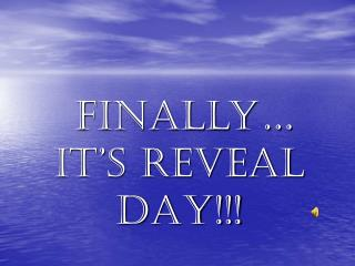 Finally… IT'S REVEAL DAY!!!