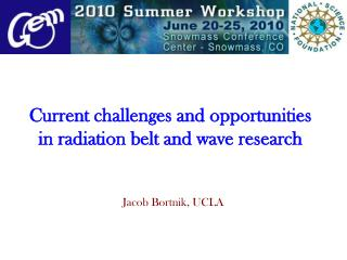 Current challenges and opportunities in radiation belt and wave research