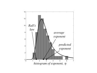 histogram of exponent,  