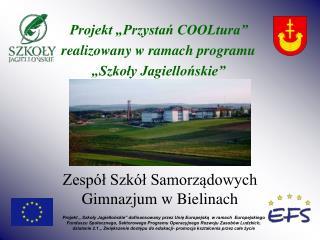 Zespół Szkół Samorządowych Gimnazjum w Bielinach