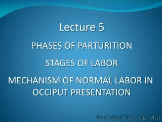 Lecture 5 PHASES OF PARTURITION STAGES OF LABOR MECHANISM OF NORMAL LABOR IN  OCCIPUT PRESENTATION