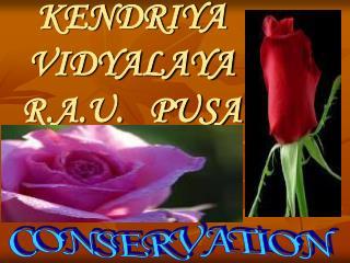 KENDRIYA  VIDYALAYA   R.A.U.   PUSA