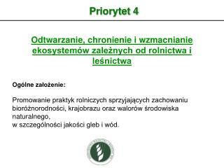 Priorytet 4