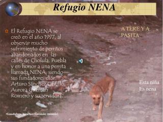 Refugio NENA
