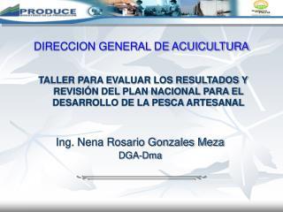 Ing. Nena Rosario Gonzales Meza DGA-Dma