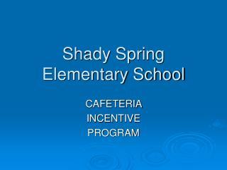 Shady Spring Elementary School