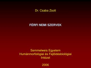 Dr. Csaba Zsolt  FÉRFI NEMI SZERVEK Semmelweis Egyetem Humánmorfológiai és Fejlődésbiológiai