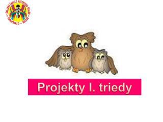 Projekty I. triedy