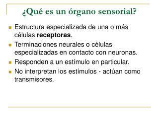 �Qu� es un �rgano sensorial?