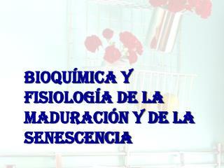 BIOQUÍMICA Y FISIOLOGÍA DE LA MADURACIÓN Y DE LA SENESCENCIA