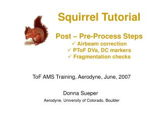 Squirrel Tutorial Post – Pre-Process Steps  Airbeam correction  PToF DVa, DC markers