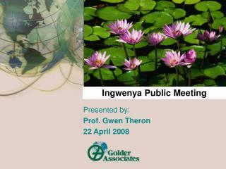 Ingwenya Public Meeting