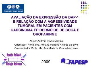 Aluno: Audrei Estivan Martins Orientador: Profa. Dra. Adriana Madeira Alvares da Silva