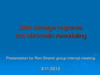 DNA damage response  and chromatin remodeling Presentation for Ron Shamir group internal meeting